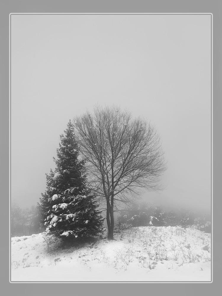 """фото """"*"""" метки: пейзаж, зима"""