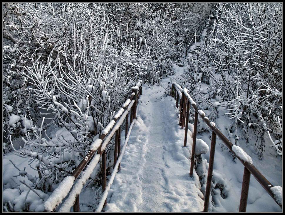 """фото """"Тропинка в Зиму..."""" метки: пейзаж, зима"""