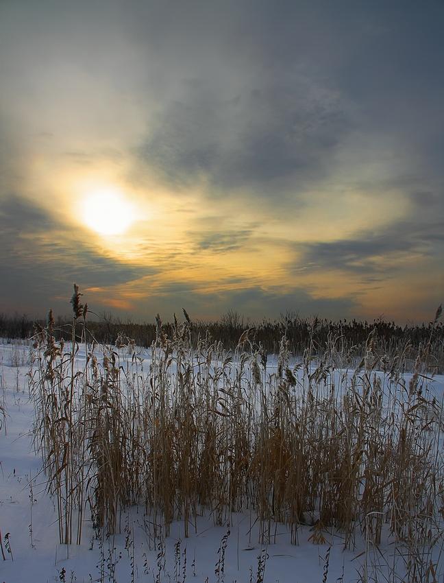 """фото """"Морозным утром"""" метки: пейзаж, зима"""