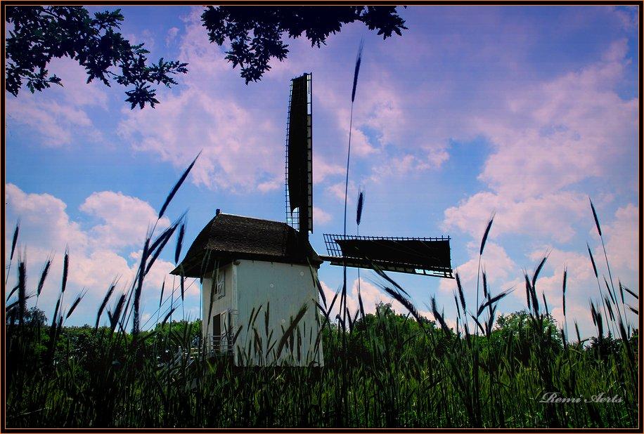 """фото """"old windmill"""" метки: архитектура, пейзаж, лето"""