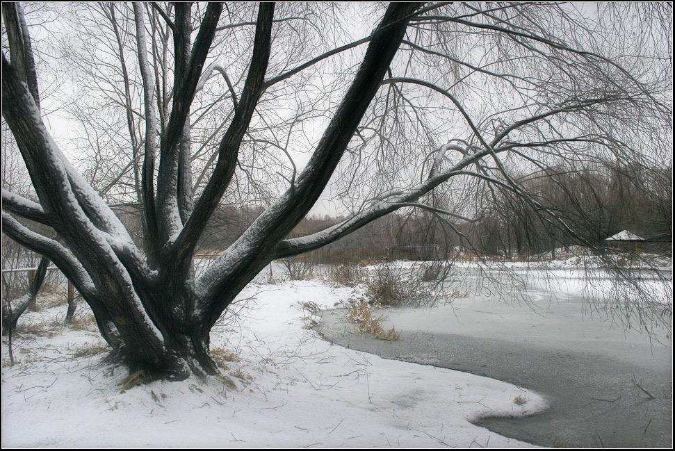 "фото ""первозимье"" метки: пейзаж, вода, зима"