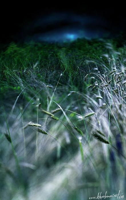 """фото """"Мышиный рассвет"""" метки: пейзаж, ночь"""