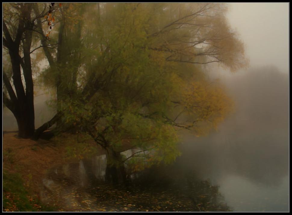 """фото """"Утро в парке..."""" метки: пейзаж, осень"""