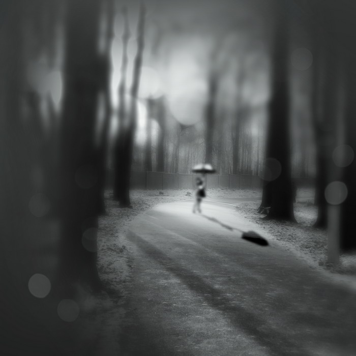 """фото """"лесные фантазии"""" метки: жанр, абстракция,"""