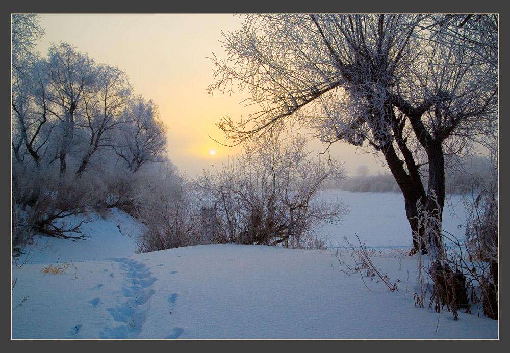 """фото """"Морозная"""" метки: пейзаж, зима"""