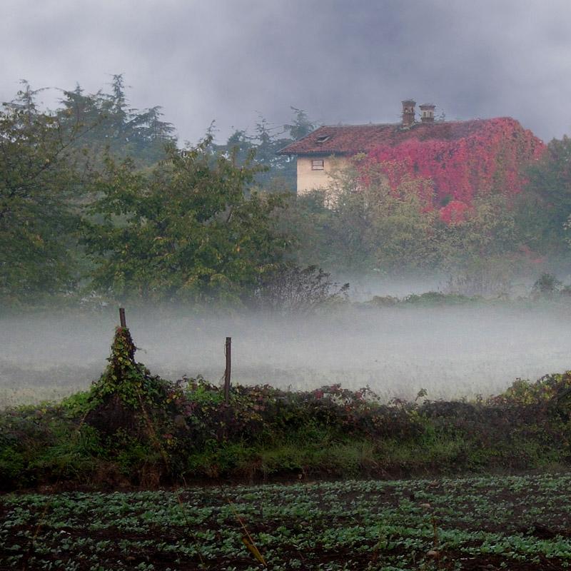 """фото """"Autumn"""" метки: пейзаж, осень"""