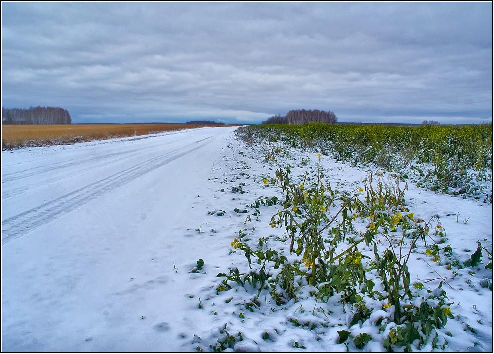 """фото """"Промчалась Зима по дороге...."""" метки: пейзаж, осень"""