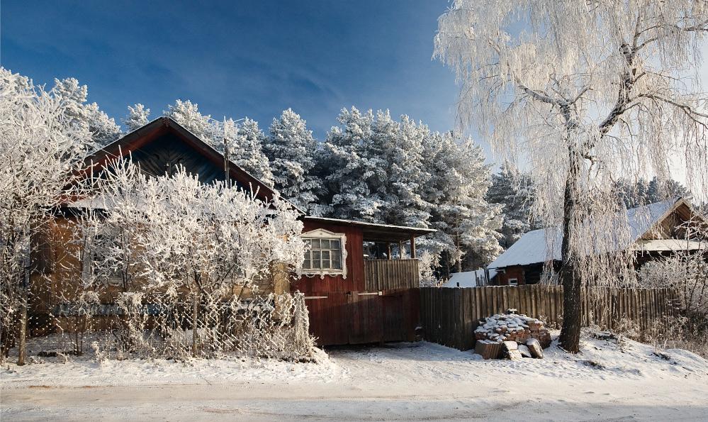 """фото """"За морозными веточками"""" метки: пейзаж, зима"""