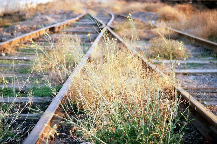 """фото """"Жизнь у железной дороги"""" метки: разное, фрагмент,"""