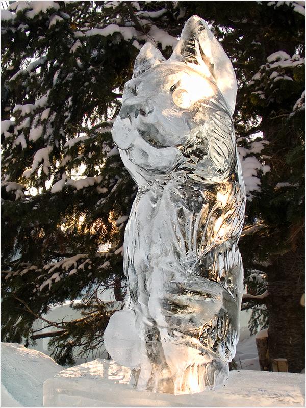 """фото """"[Ледяные фигуры] [XIII]"""" метки: репортаж, разное,"""