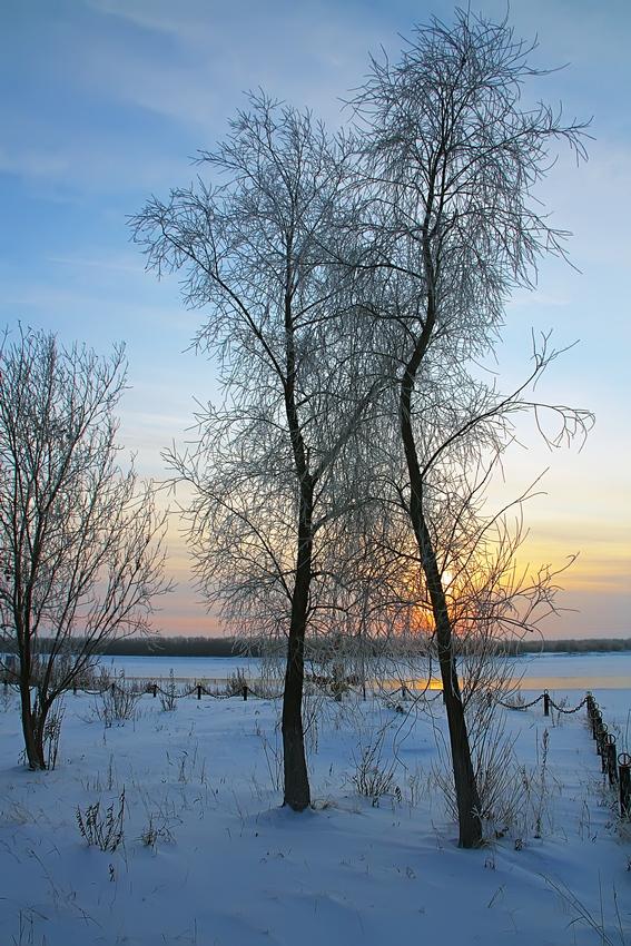"""фото """"В обнимку"""" метки: пейзаж, зима"""
