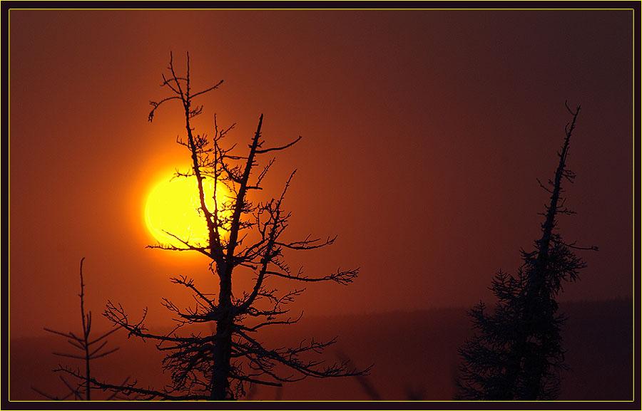 """фото """"Утренняя фантазия"""" метки: пейзаж, закат, зима"""