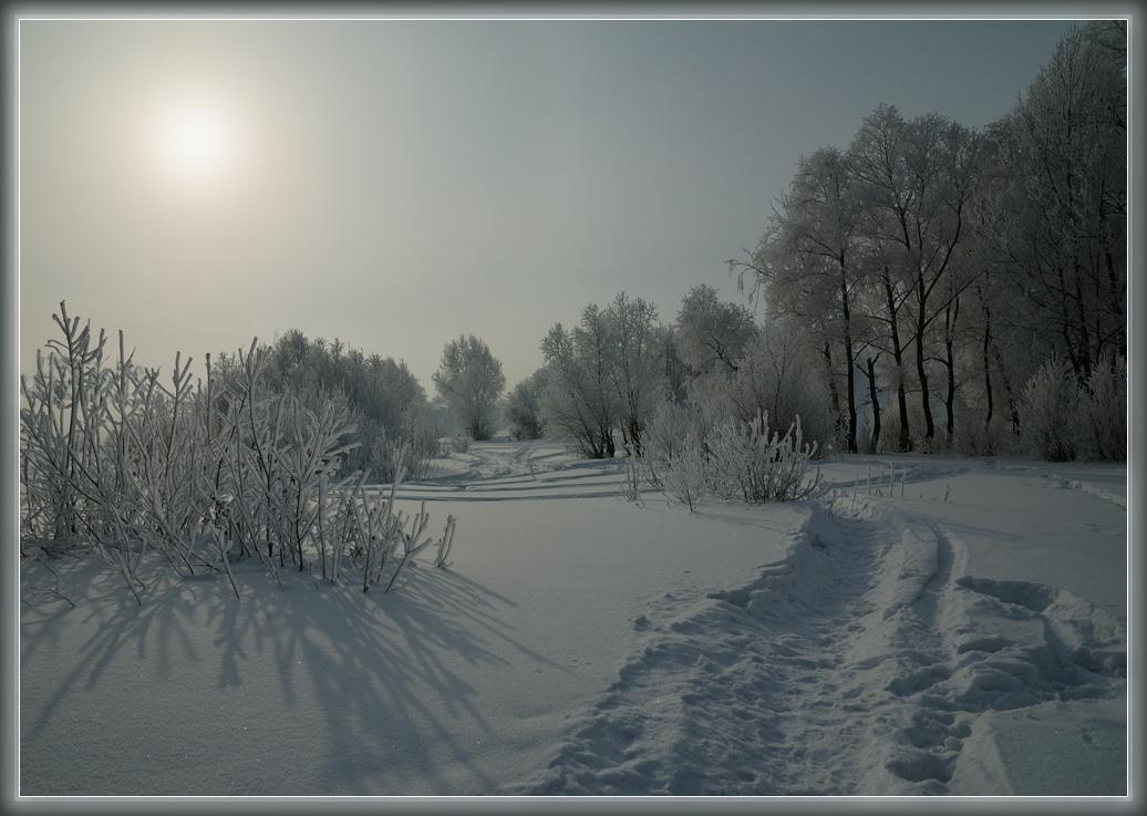 """фото """"Снежной тропой..."""" метки: пейзаж, зима, лес"""