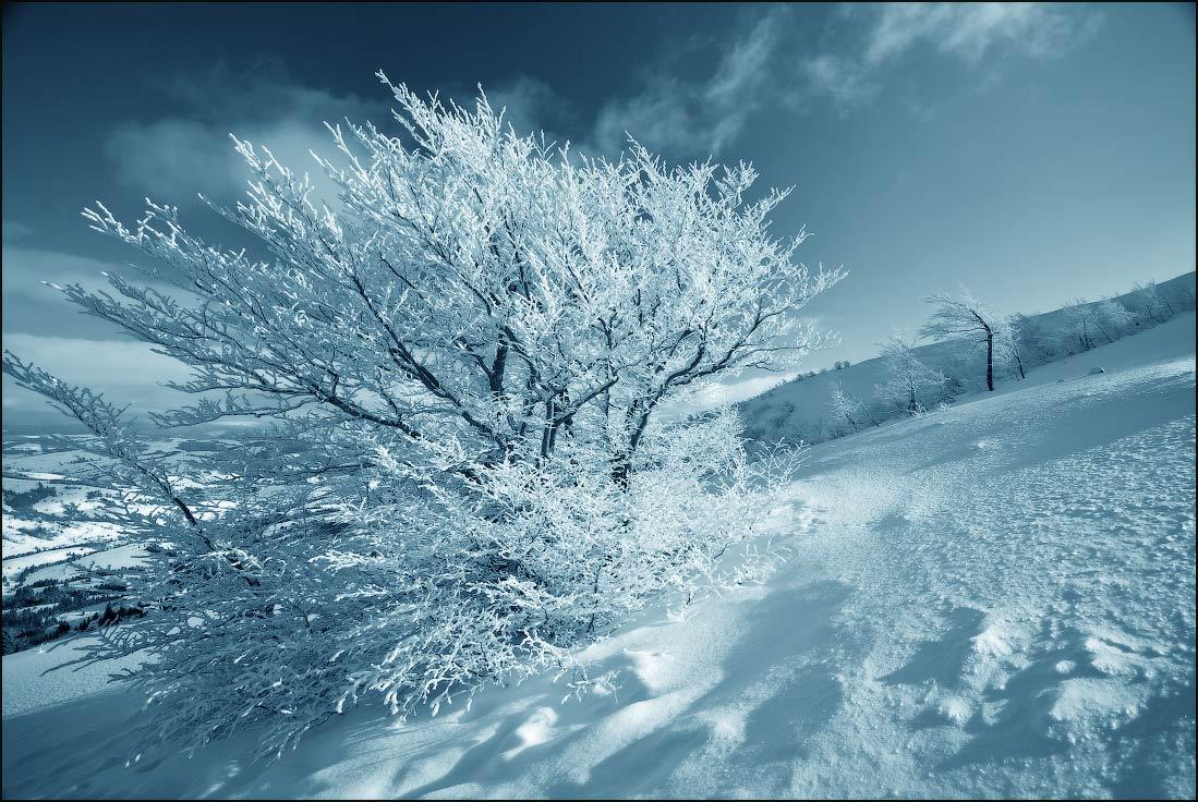 """фото """"Зимний сон"""" метки: пейзаж, горы, зима"""