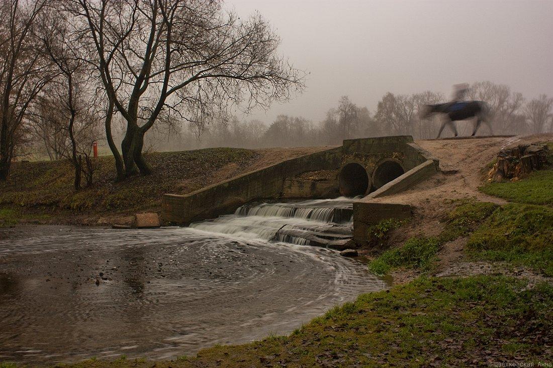 """фото """"призрачно все.."""" метки: пейзаж, вода, осень, туман"""