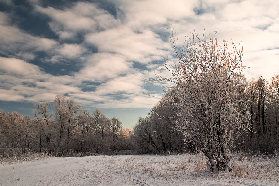 """фото """"На Совце"""" метки: пейзаж, зима"""