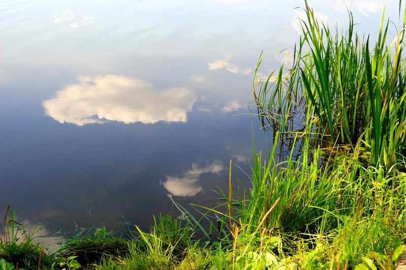 "фото ""...в отражении."" метки: пейзаж, лето"