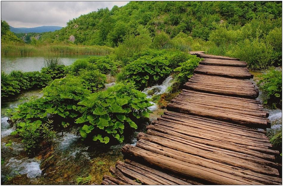 "фото ""Буйная зелень"" метки: пейзаж, путешествия, Европа, лето"