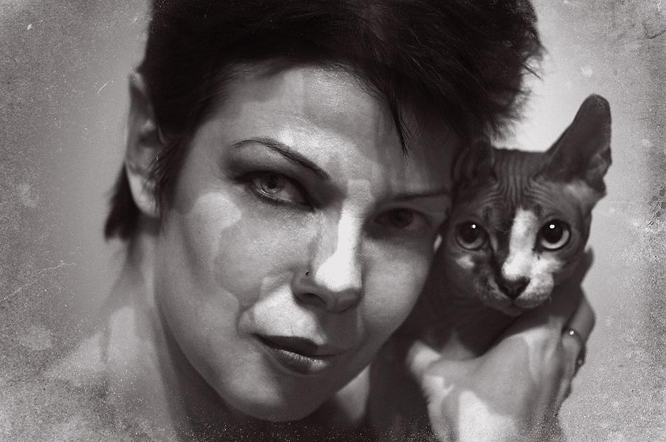 """фото """"Кошки"""" метки: ,"""