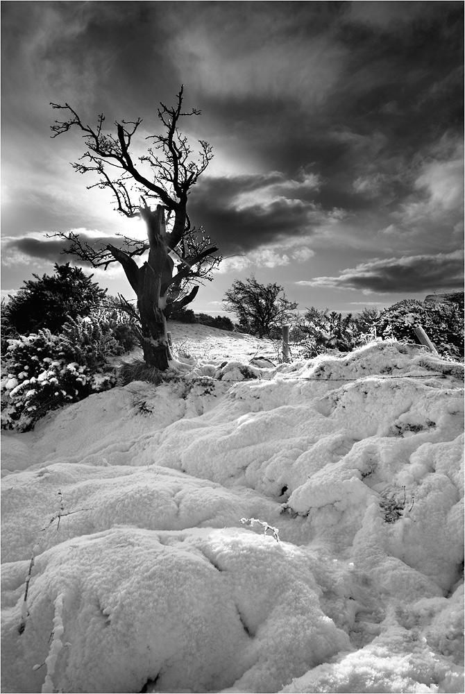 "photo ""Snowy Irish Hills"" tags: landscape,"