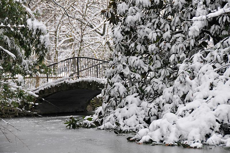"""фото """"_DSC0596"""" метки: пейзаж, зима"""