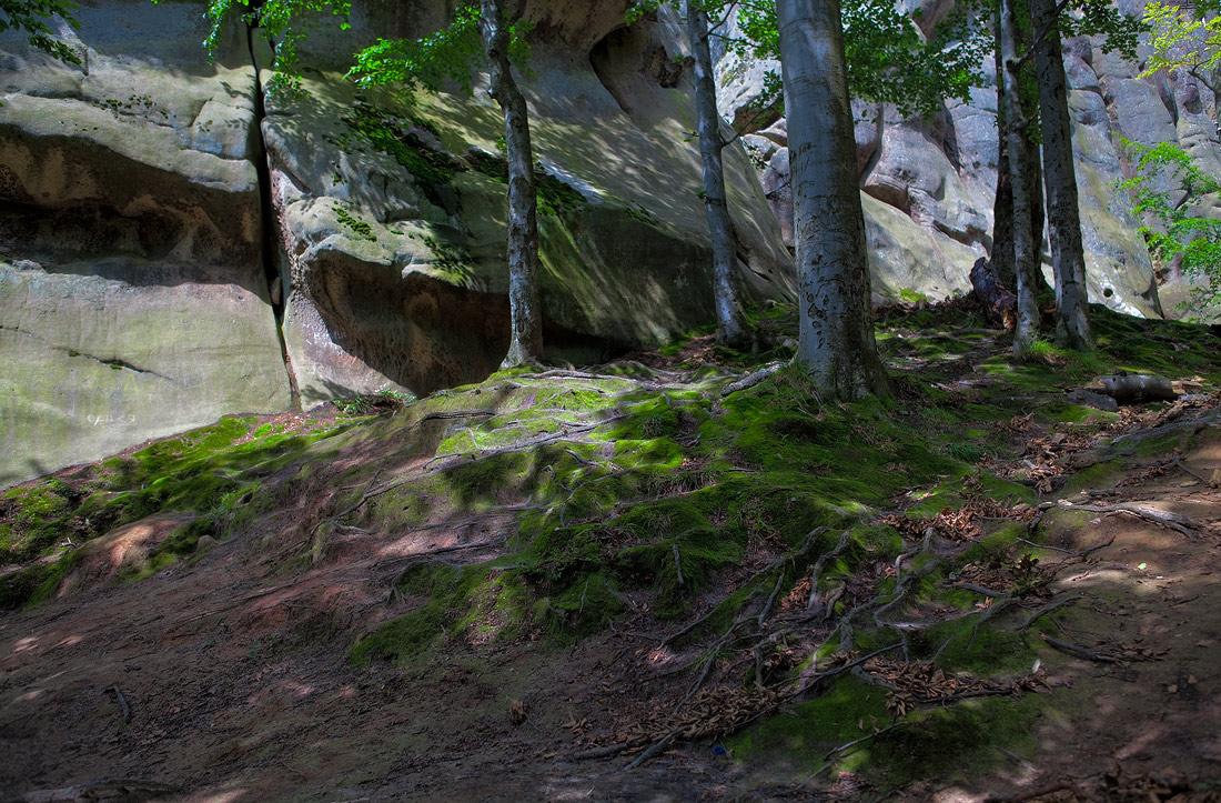 "фото ""скалы Довбуша"" метки: пейзаж,"