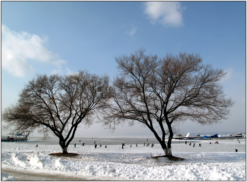 """photo """"***"""" tags: reporting, landscape, winter"""