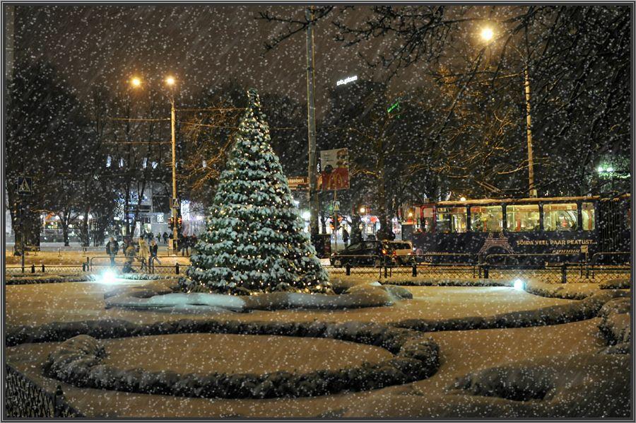 """фото """"Предновогодняя"""" метки: пейзаж, зима"""