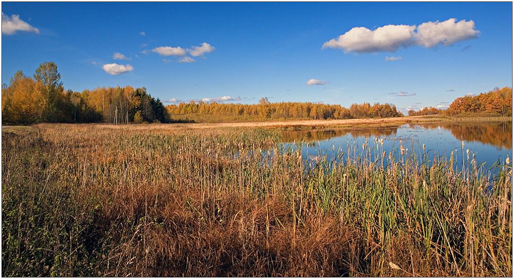 """photo """"Boggy coast"""" tags: landscape, autumn, clouds"""