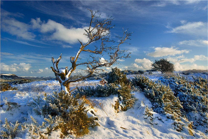 "photo ""Arctic Ireland 3"" tags: landscape,"