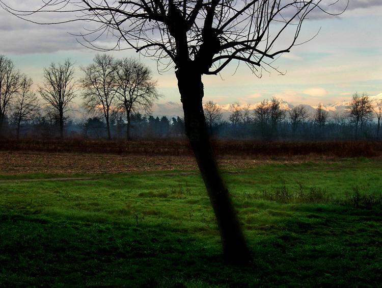 """фото """"Green and nature"""" метки: пейзаж,"""
