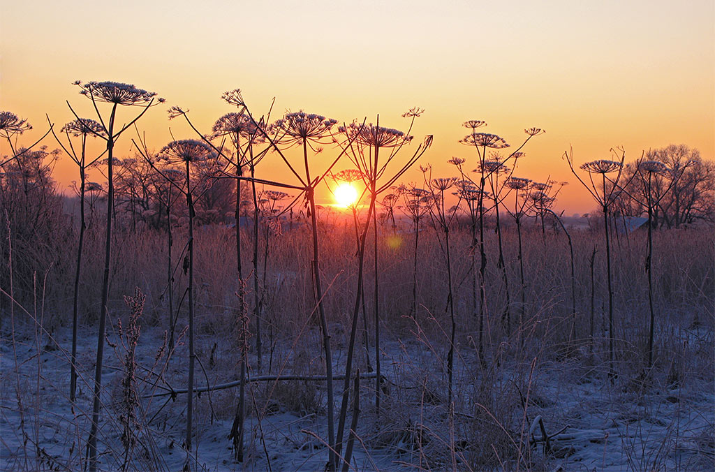 "фото ""***"" метки: пейзаж, закат, зима"