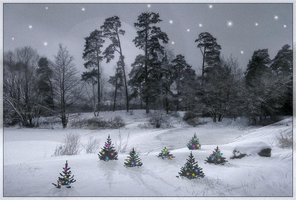 """фото """"С Новым Годом!"""" метки: пейзаж, жизнь ФФ, зима"""