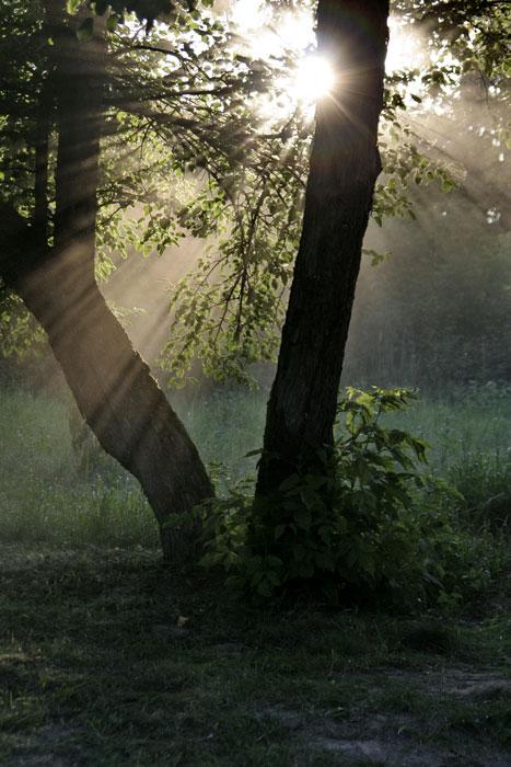"""фото """"Дача. Вечер."""" метки: пейзаж, закат"""