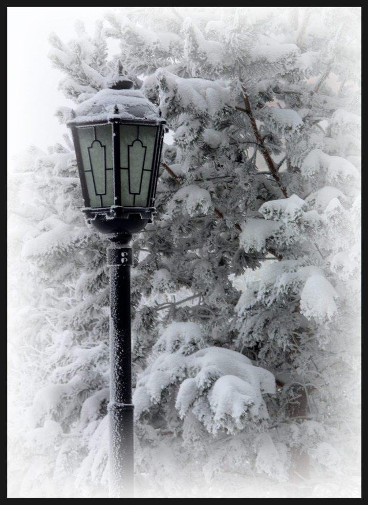 "photo ""***"" tags: landscape, misc., winter"