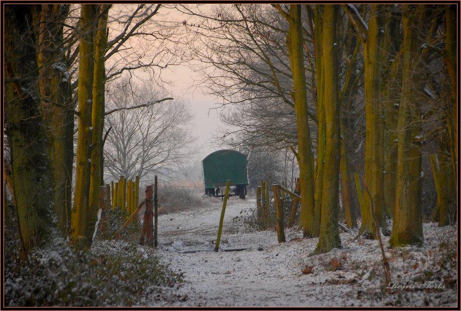 "фото ""Nature reserve De Maten Genk"" метки: пейзаж, зима"