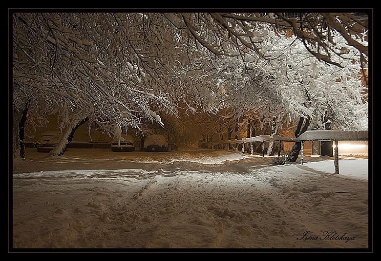 """фото """"Видеть во сне снег"""" метки: пейзаж, черно-белые, зима"""