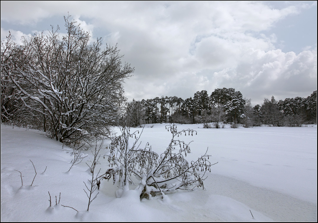 """фото """"зимний пейзаж"""" метки: пейзаж, зима, лес"""