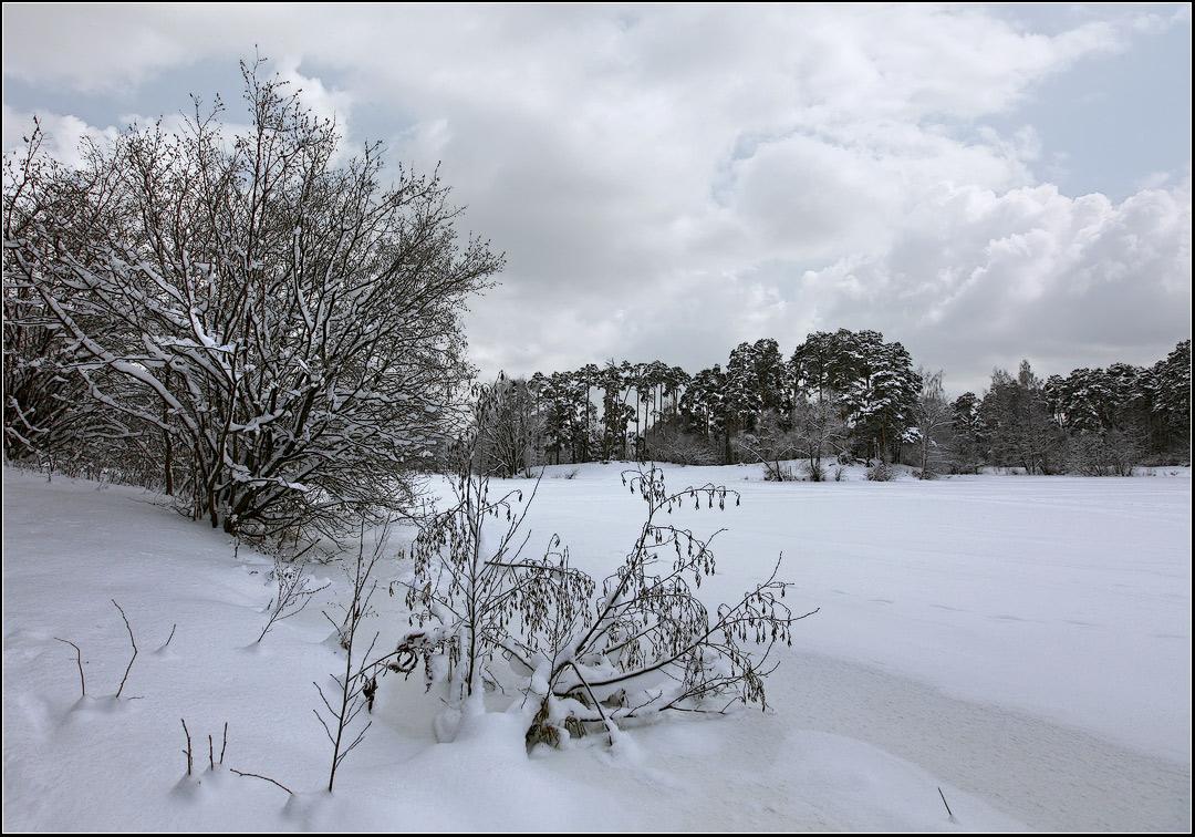 "photo ""winter landscape"" tags: landscape, forest, winter"