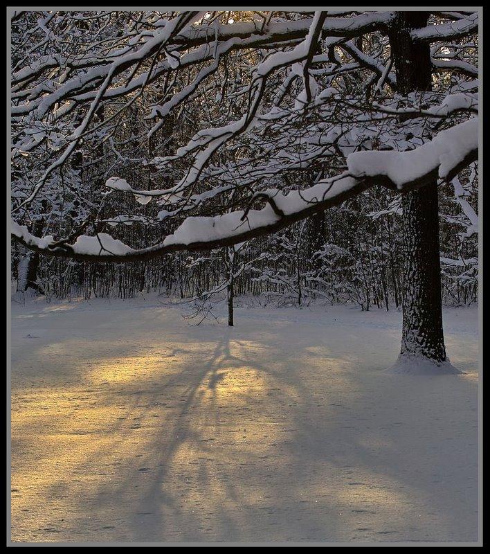 """фото """"зимний вечер"""" метки: ,"""