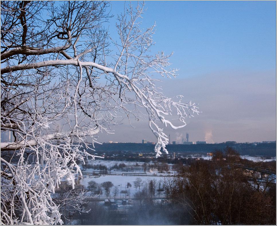 """фото """"И только одна заснежена"""" метки: пейзаж, зима"""