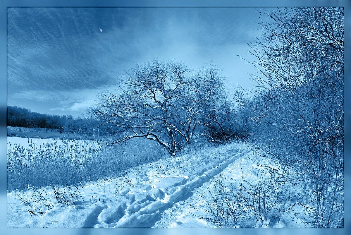 """фото """"Зимою, при луне"""" метки: пейзаж, зима"""