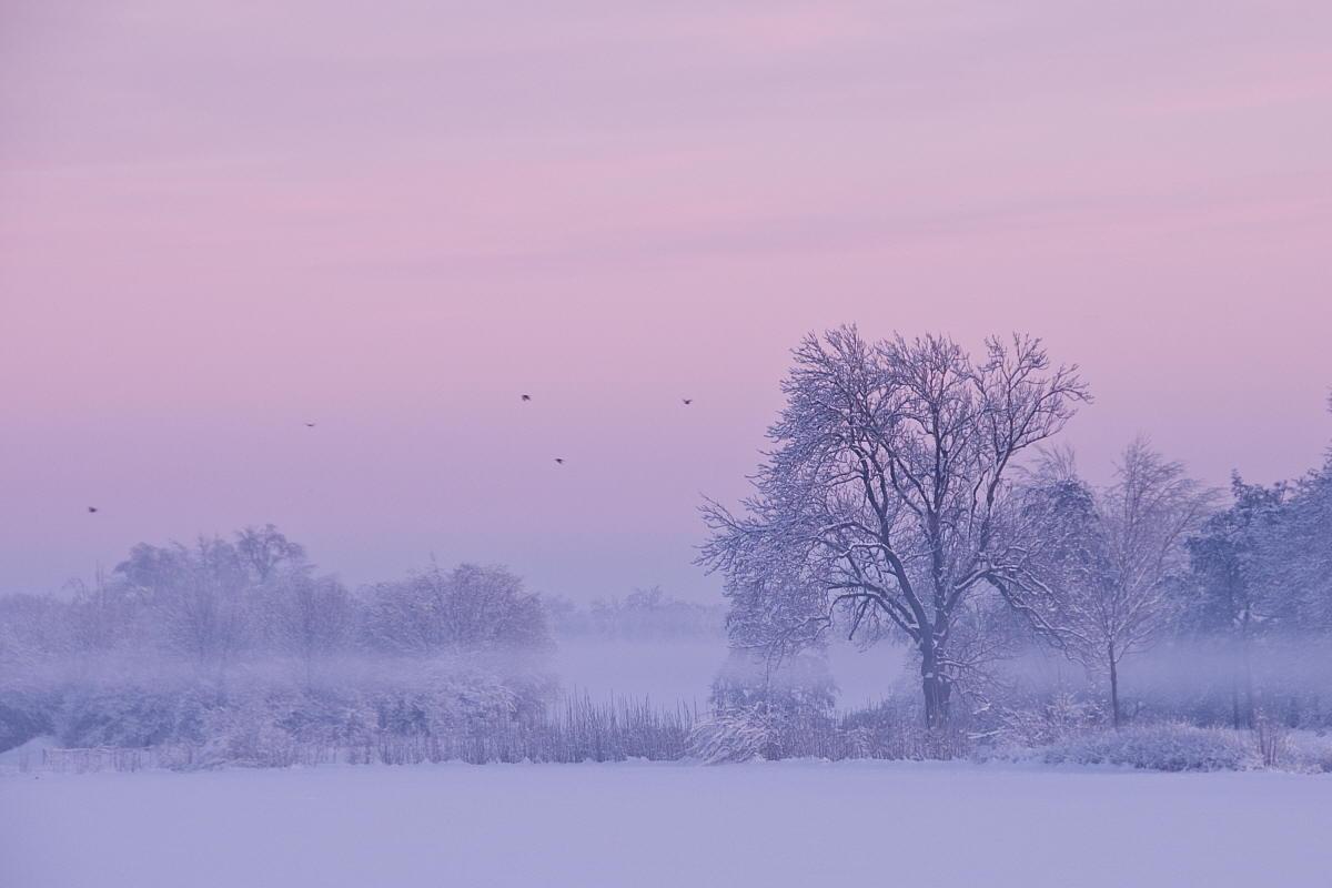 """фото """"Januar"""" метки: пейзаж, зима"""