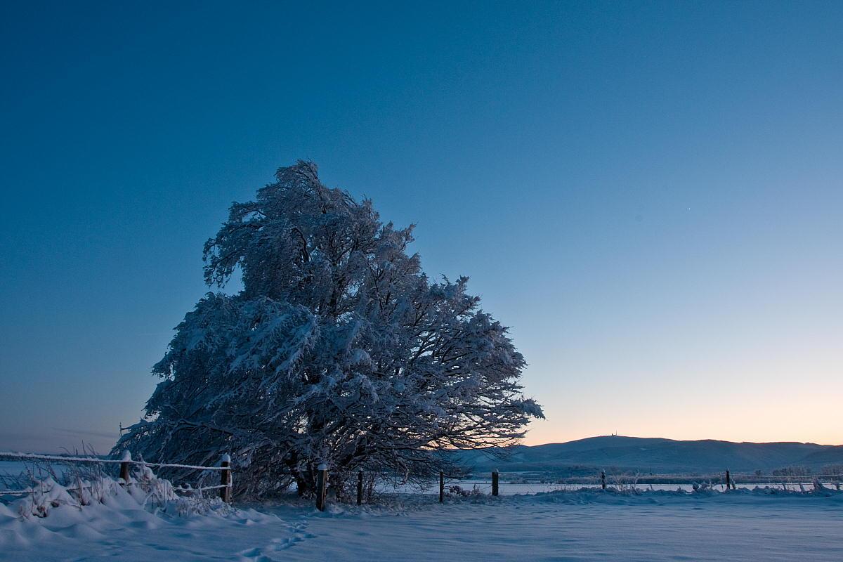 """фото """"Harz"""" метки: пейзаж, зима"""