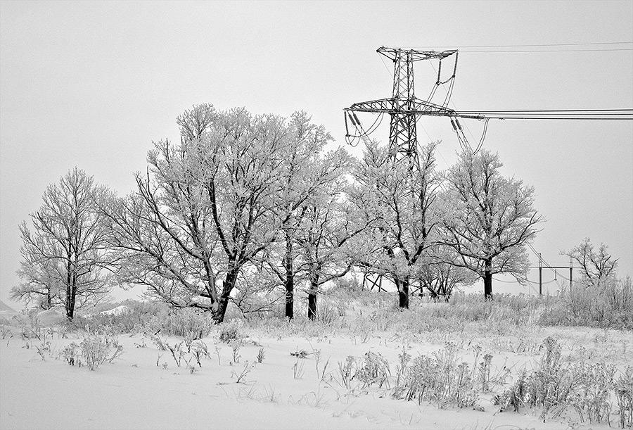 """фото """"+ провода 2"""" метки: пейзаж, зима"""