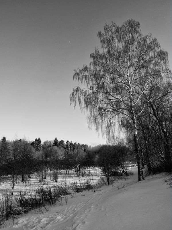 """фото """"Этюд №3"""" метки: пейзаж, зима"""