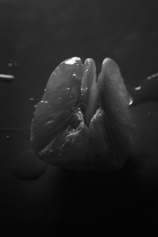 "photo ""Three slices of mandarin"" tags: black&white, still life,"
