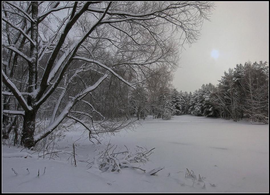 """фото """"морозное утро"""" метки: пейзаж, зима, лес"""