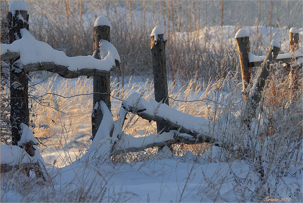 """фото """"Январь. Изгородь"""" метки: пейзаж,"""