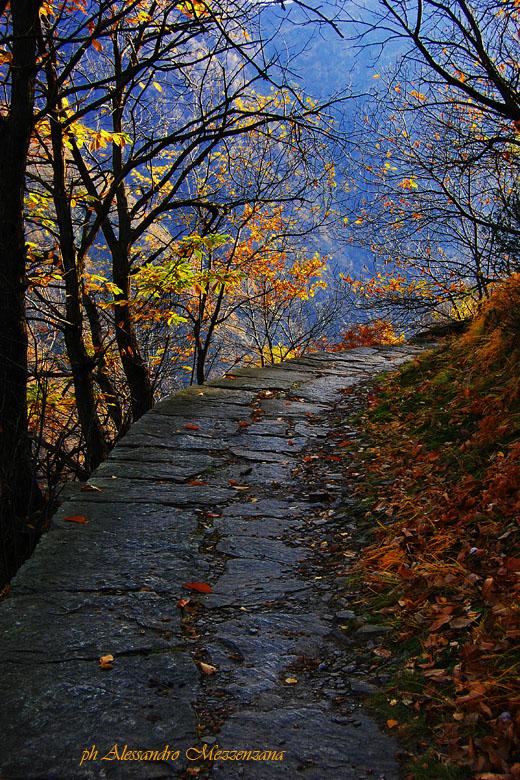 "photo ""Alpeggio"" tags: landscape, mountains"